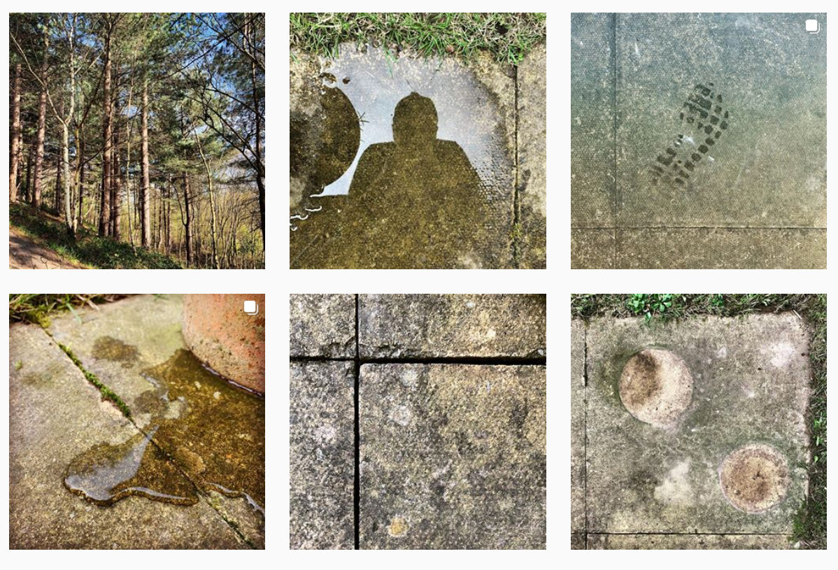 Image : An arrangement of six photographs, each showing a different view of a garden patio or woodland around the theme of moss and stone.